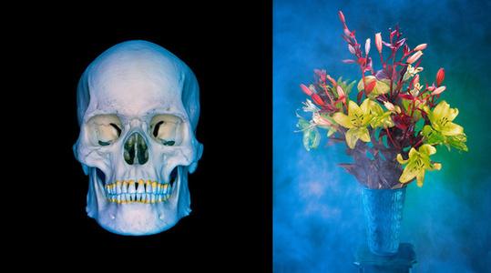 Flowers and Ammonia