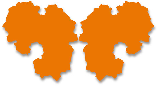 Rorschach Portrait (orange-2 parts)