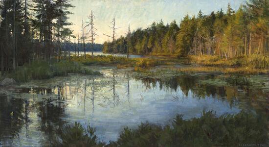 Marsh at Round Pond