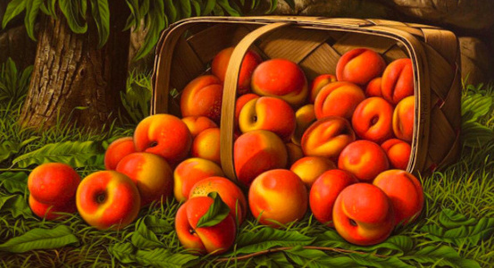 Peaches in a Basket Under a Tree