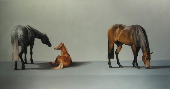 7. Thoroughbred Brood Mares and Foal
