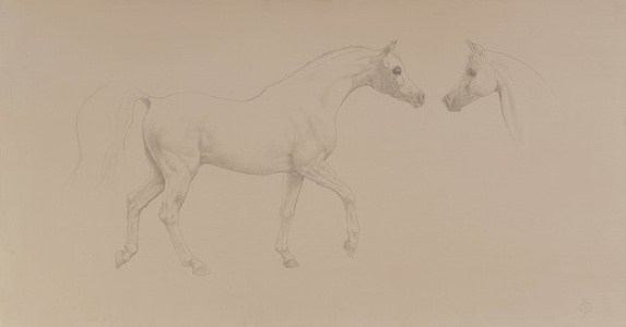 21. Arabian Stallion Approaching His Mare