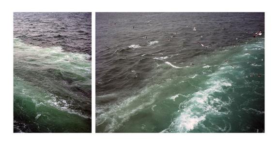 Wakes the Sea I