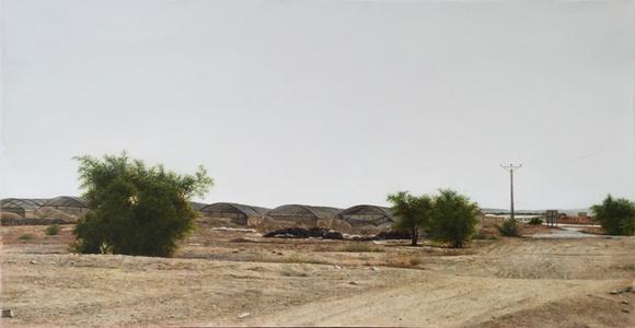 Israeli desert 2