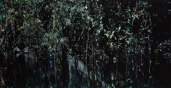 Kakadu National Park I, Australia