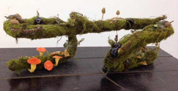 Untitled (Slug Farm)