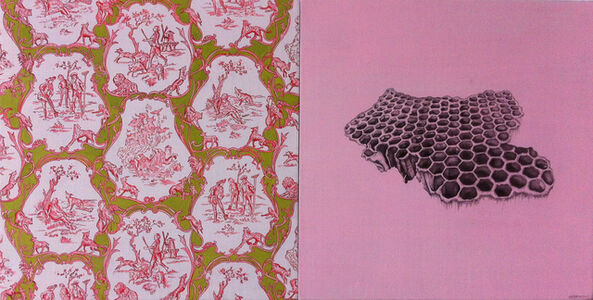 Pink Toile and Honeycomb