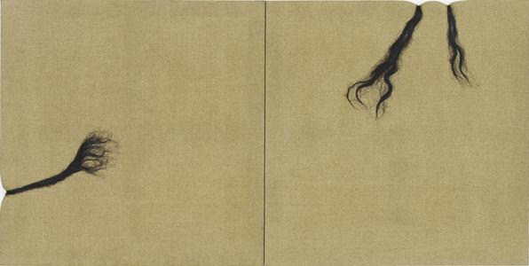 Hairy Canvas