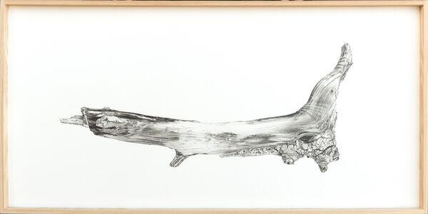 Driftwood No 1