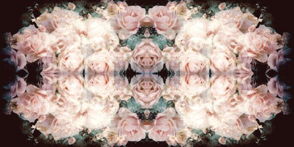 Ruffles and Roses