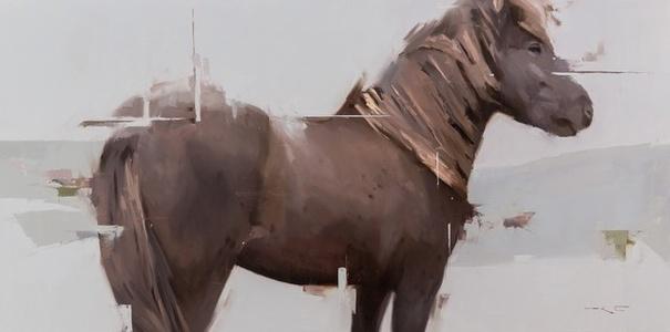 Icelandic Horse 9: Freymar