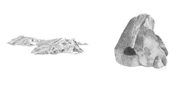 Montana y roca