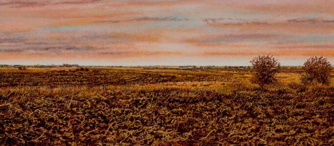 Illinois Landscape #168