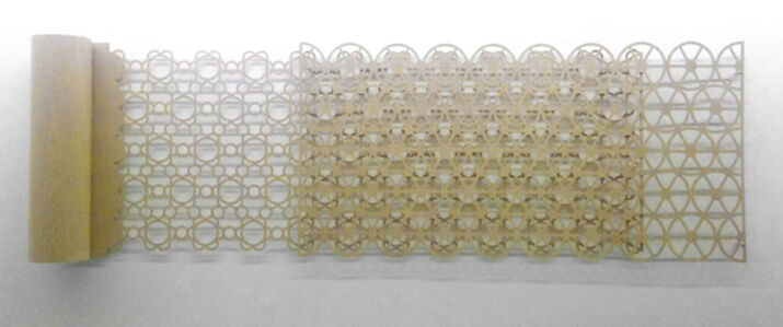 Celosia composición de flores circulares de rollo / Lattice composition of flowers