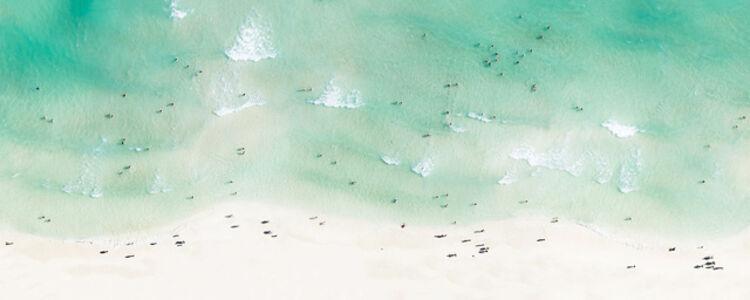Miami shore (Up in the air - Miami)