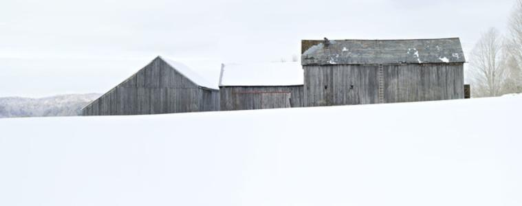 Winter Barnscape