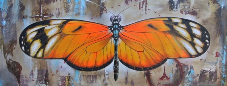 Fascinante Trayectoria Butterfly