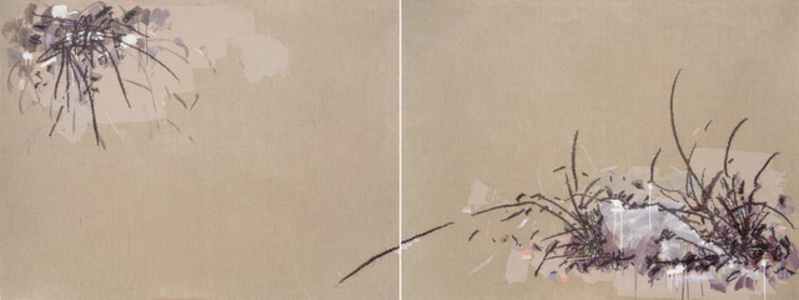 Boulders, Grass, Leaves ( Diptych)