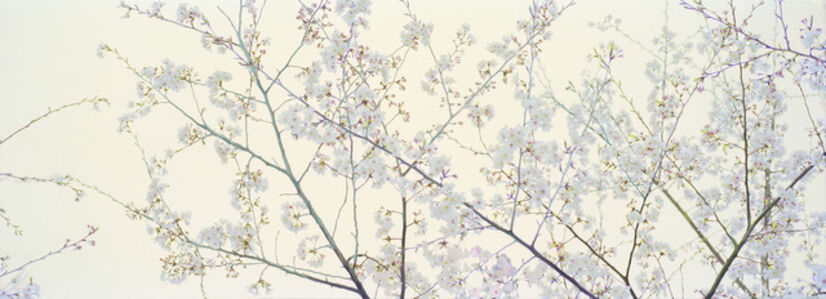 Untitled (Tree with Flowers 2)
