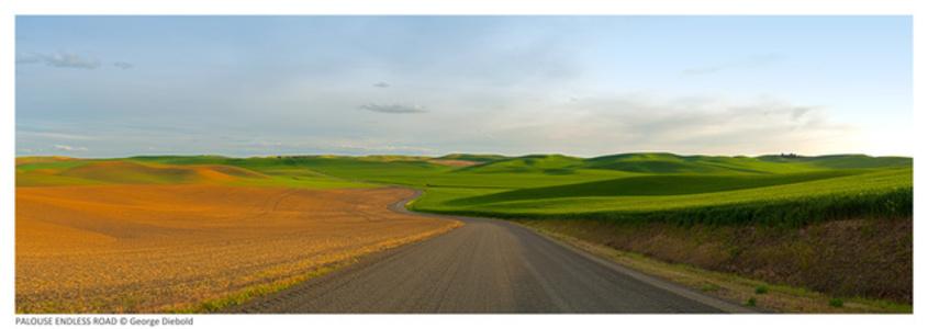 Palouse Endless Road