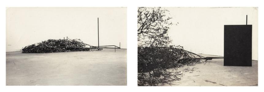"Documentation of site-specific ""Untitled"", presented at the XIV Bienal Internacional de São Paulo, Brazil"