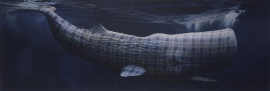 Moby Dick (Merrilees)