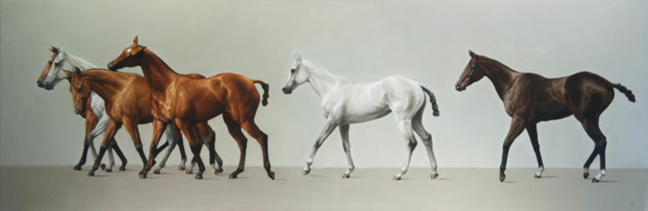 14. Walking Line of Six Polo Ponies