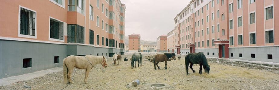 New residential development. Guide, Qinghai, China.