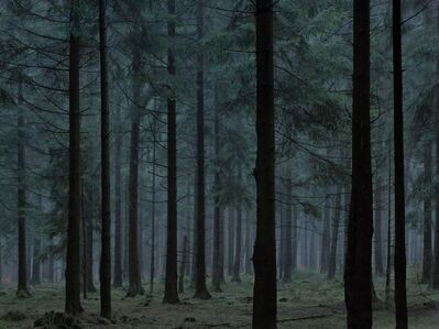 Michael Lange, 'WALD | Landscapes of Memory#0252', 2009