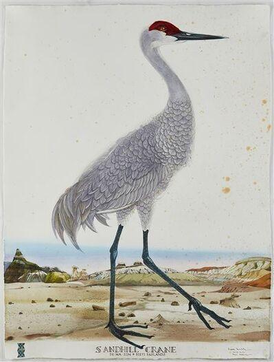 Scott Kelley (b. 1963), 'Sandhill Crane, De-Na-Zin, Bisti Badlands, NM', 2019-2020