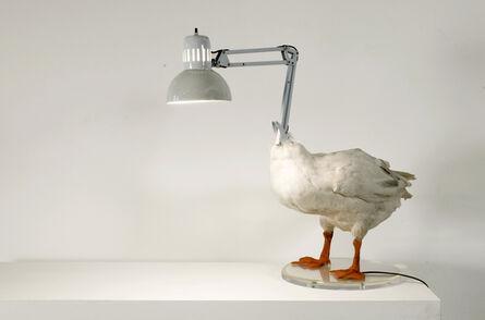 Sebastian Errazuriz, 'Duck Lamp', 2004
