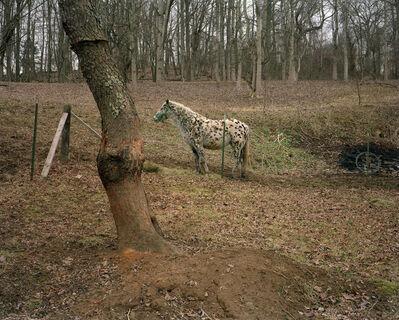 Mike Smith, 'Unicoi County, TN', 2001