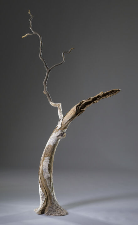 Eric Serritella, 'Southern Birch', 2017