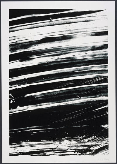 Ellsworth Kelly, 'The Rhine from 'States of the River'', 2005