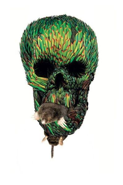 Jan Fabre, 'Skull with Mole', 2012