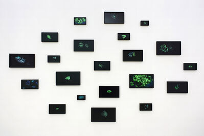 Amie Siegel, 'RM #1-21', 2014