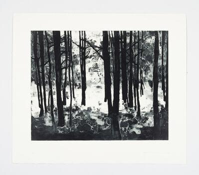 Matt Saunders, 'Landscape III (Bright Forest)', 2015