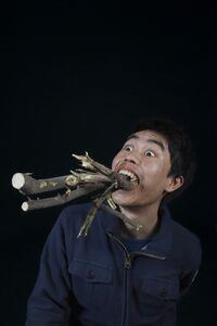 Chen Xiaoyun, 'State Terrorism in Ultimate Form of Pre-Raphaelite Brotherhood', 2012