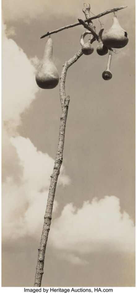 Walker Evans, 'Gourd-nests for the Martins, Hale County, Alabama', 1936