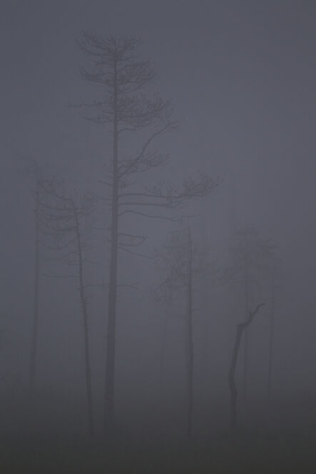 Natalia Mikkola, 'Kajanaland, No Man's Land I', 2013
