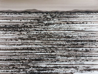 David Middlebrook, 'Fields, North of White Cliffs', 2016-2017
