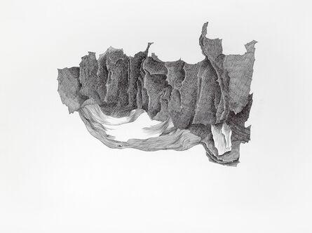 Laura Pugno, 'Morfogenesi da Albrecht Durer', 2015