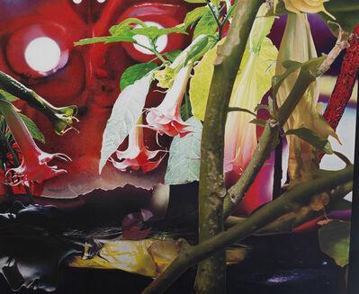 Narcisse Tordoir, 'Still Light'
