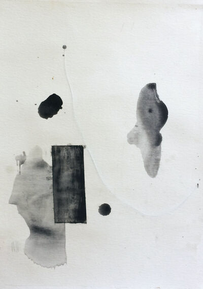 Eugenio Espinoza, 'A room in the garden', 2020
