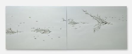 Saad Qureshi, 'Surfaces', 2013