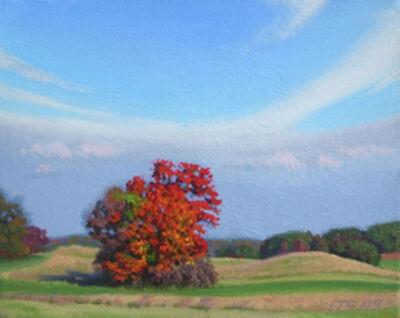 Ed Stitt, 'Beal's Farm Autumn', 2008