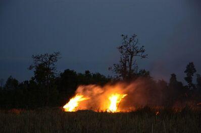 Apichatpong Weerasethakul, 'The Fire', 2009