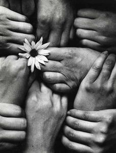 Michel Joly, 'Hands and Flower (Fleur aux Poings)', 1972