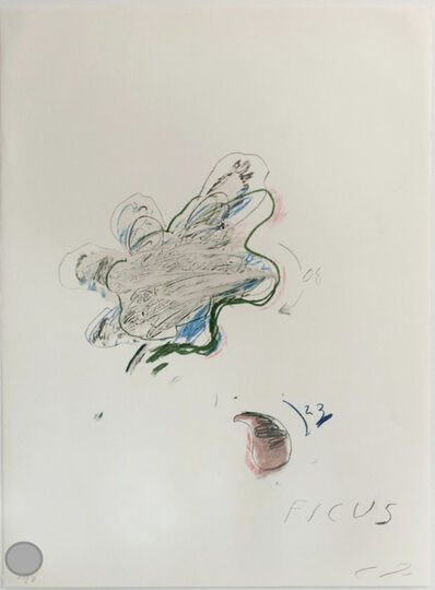 Cy Twombly, 'NATURAL HISTORY II: FICUS CARICA', 1975-1976