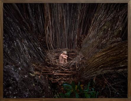 Bootsy Holler, '0925.1617 Hamäkuä Forest', 2020